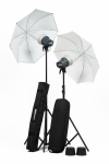 Комплект освещения Elinchrom D-Lite RX ONE Umbrella Set